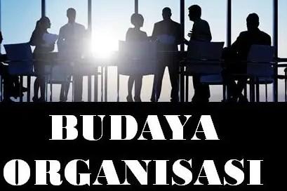 Pengertian-Budaya-Organisasi-Menurut-Ahli,-Fungsi,-Jenis,-Unsur-&-Tipe